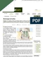 Bouturage de feuille - multiplier vos plantes simplement.pdf