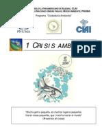 Libro Crisis Ambiental PNUMA-OnU