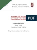 Elementos de Las Normas Juridicas GBH