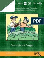 Boas práticas agrícolas para produção de alimentos seguros no campo