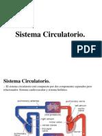 11. Circulatorio