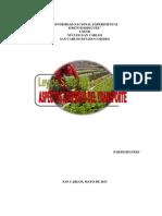 LEY DE SALUD AGRÍCOLA INTEGRAL (ANÁLISIS) (Autoguardado)