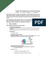 Manual Oracle 10g