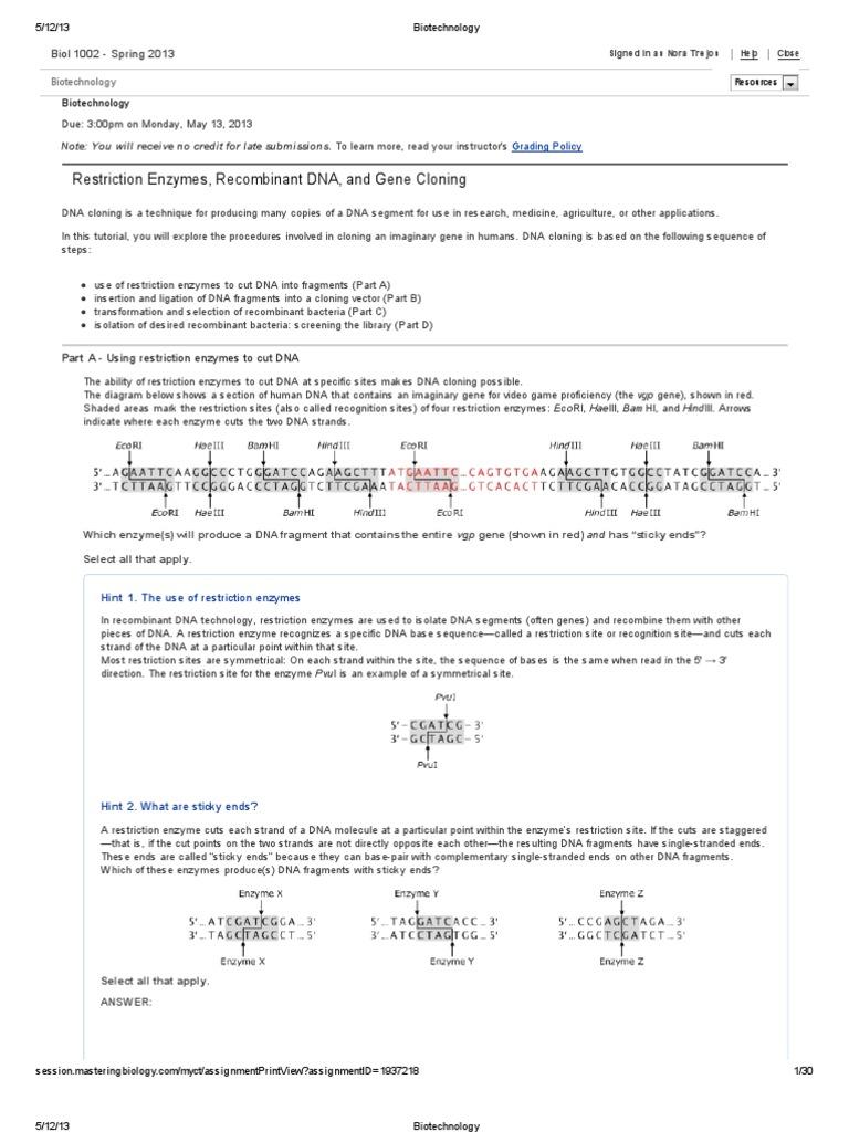 Biotechnology Molecular Cloning – Restriction Enzyme Worksheet