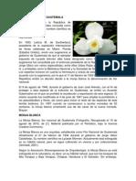 FLOR NACIONAL DE GUATEMALA.docx