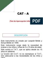 CAT-A & H