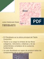Fibroblasto.pptx