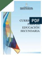Curriculum Nivel Secundaria