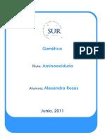 Amino Acid Uri A
