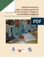 CDI Informe Final de La Consulta Sobre El Anteproyecto