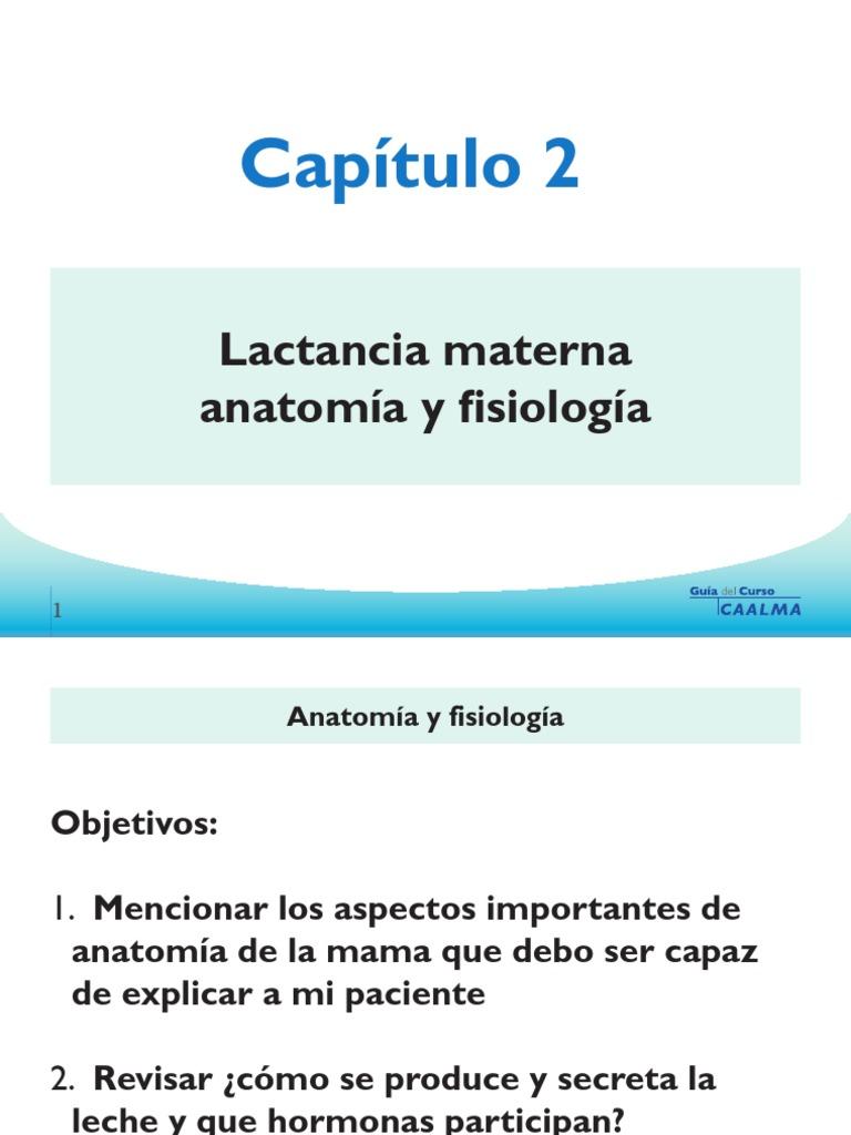 2.Lactancia materna anatomia y fisiologia.pdf