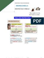 Nemotecnias de NEUMOLOGIA - PLUS Medica