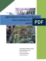 Agricultura Urbana 4
