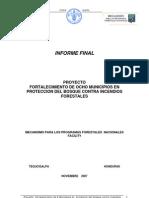 Informe Final Fundacion Vida