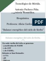 Balance energético del ciclo de
