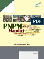 PNPM Mandiri Info Kit 2012