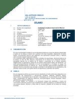 Actividad Formativa II Silabo 2012 20 ENFERMERIA