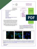 GLIOMAS.ORG  NEWSLETTERS 2013 Vol 1 (2)
