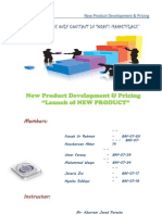 23512347 New Product Development Report