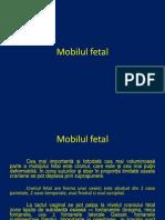 Mobilul Fetal