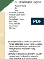 Kel 1.Anatomi Pencernaan Bagian Atas.pptx