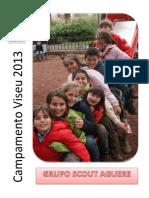 Dossier Cv Viseu 2013