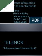 Telenor M.I.S.ppt