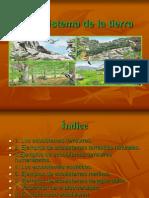 El ecosistema de la tierra tema 5 Mariana Murcia López 2º A