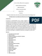 practica2fisica.docx