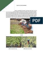 Reality of Coffee Growers