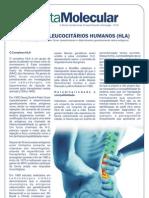 Carta_Molecular_N23.pdf