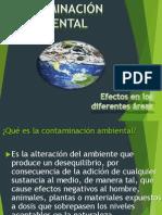 Contaminacion Ambiental(Original