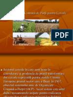Organizarea Comuna de Piata Pentru Cereale