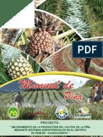 Manual de La Pina
