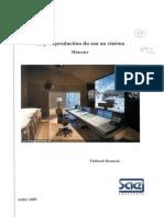 SAE_MEM_97.pdf
