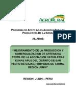 proyecto aliados