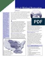 Hypoxia and Wetland Restoration