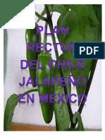 PLAN RECTOR DEL CHILE JALAPEÑO EN MEXICO