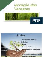 Conservação das Florestas_V1