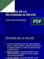 Estudio de La Pelvis