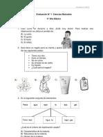 Evaluacion N°1 Ciencias para 4° Año (f)