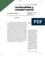 enfermedad metal mapuches arg.pdf