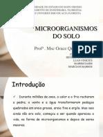 Microorganismos Do Solo