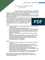 1º Estructuras y funciones de la piel - Dr. Pinto - Alejandro Espinoza