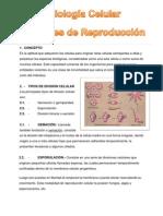 Biologia Tema 10 Fisiología Celular Funciones de Reproducción