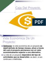 5111351 Flujo Caja Proyecto[1]
