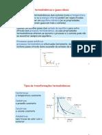 1 LeiTermodinamica Gas Ideal