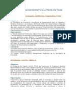 Fuentes De Financiamiento Para La Planta De Óxido De Etileno
