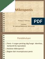 Referat Mikropenis
