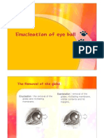 Enucleation of Eye Ball(dog)